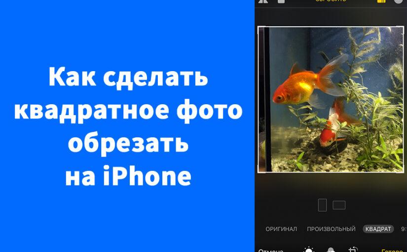 Как сделать квадратное фото обрезать на iPhone