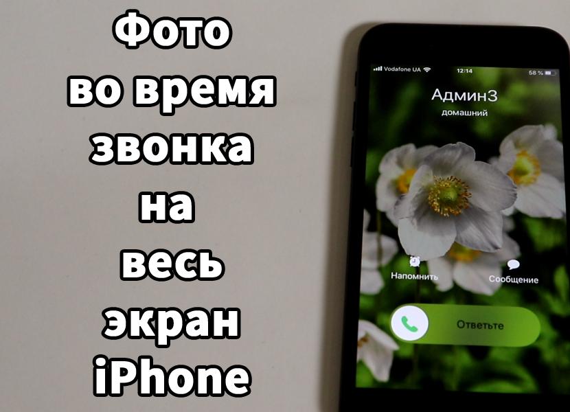 Фотография во время звонка iPhone на весь экран