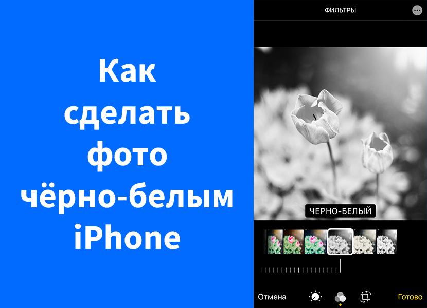 Как сделать фото черно-белым на iPhone