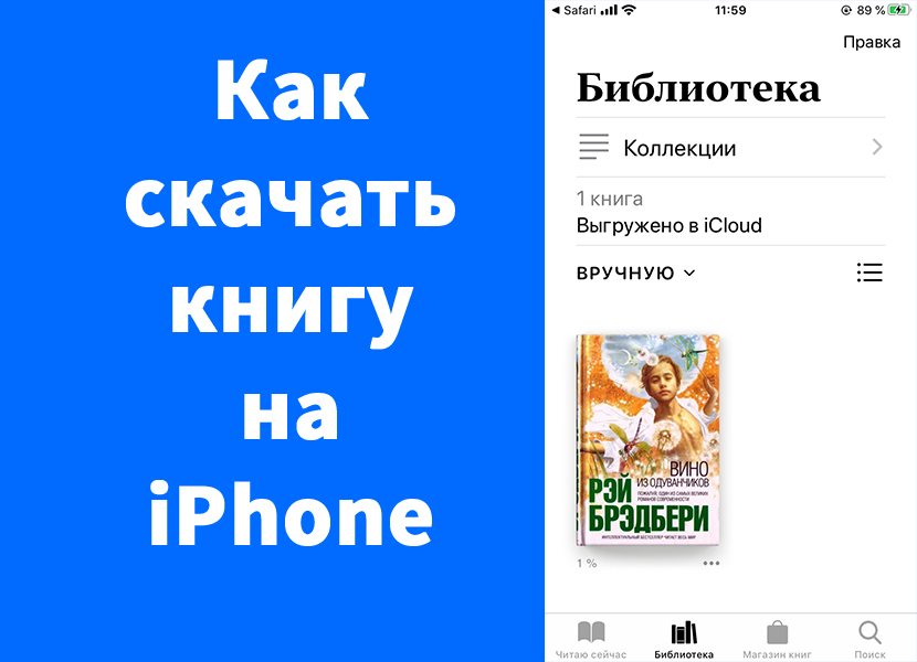 Как скачать книгу на iPhone (epub)