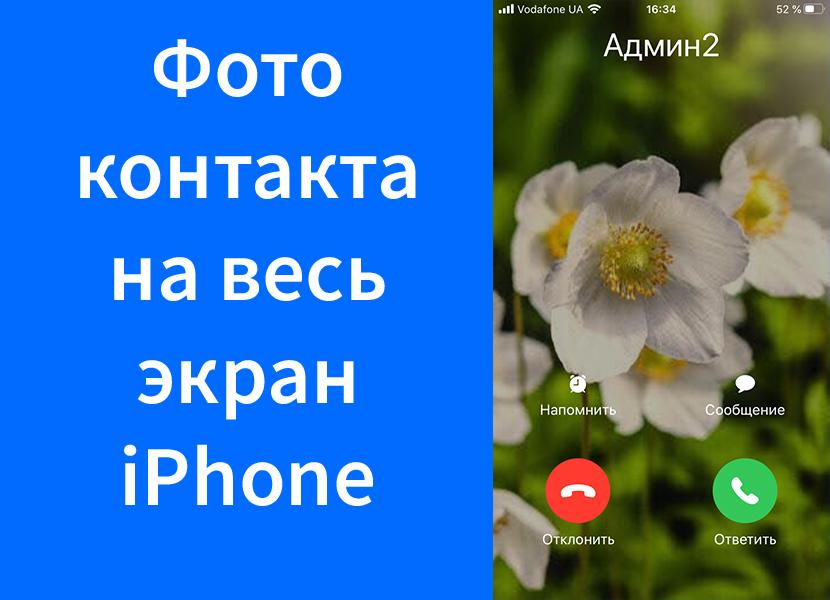 Фото контакта во время звонка не на весь экран iPhone – как исправить